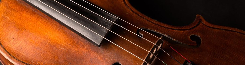 Violin - Mezzo Music Academy | Violin Lessons Dublin | Strings